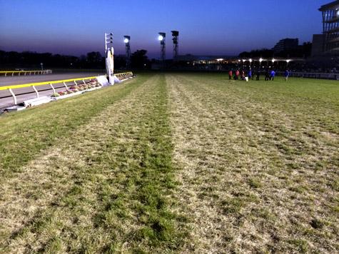 参考までにJC後の東京の芝はこんなんでした。馬が走った後ってすごい……。